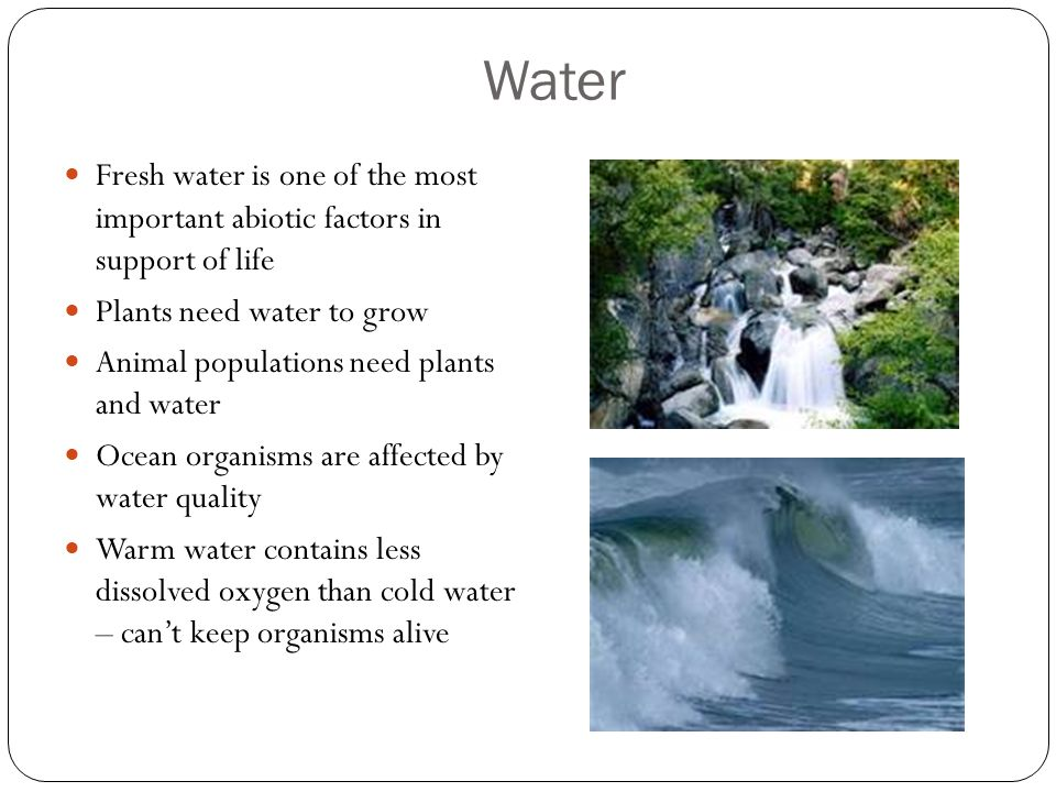Water Fresh water is one of the most important abiotic factors in support of life. Plants need water to grow.