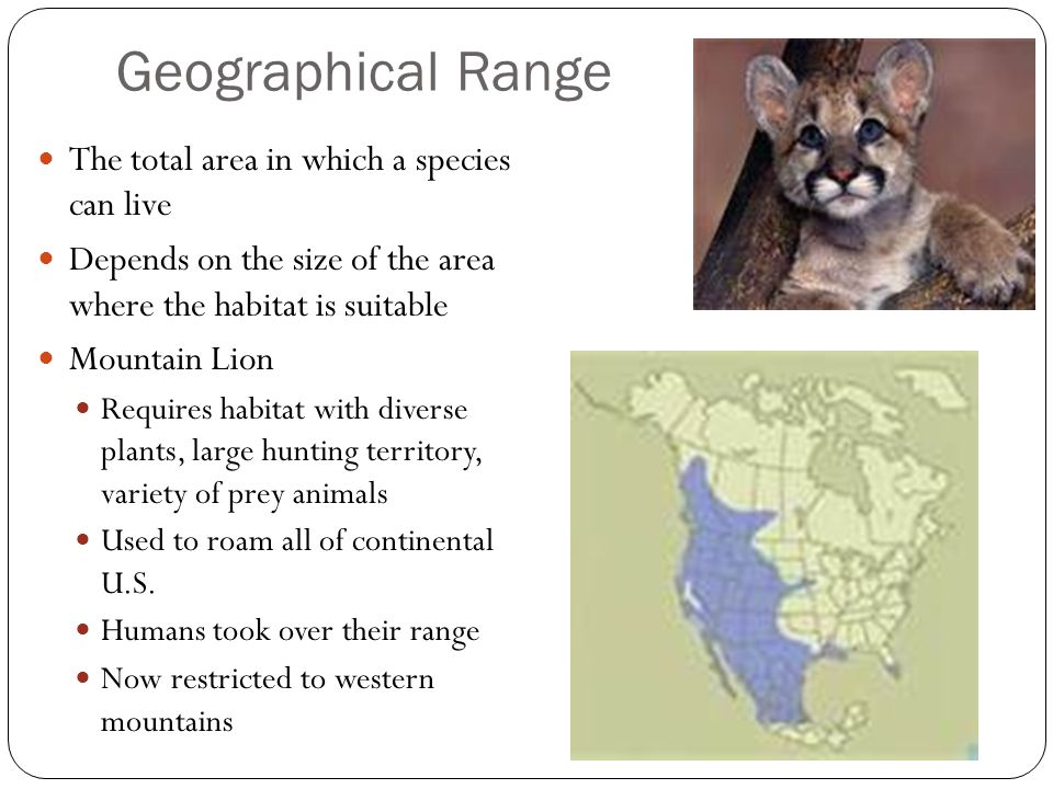 Geographical Range The total area in which a species can live