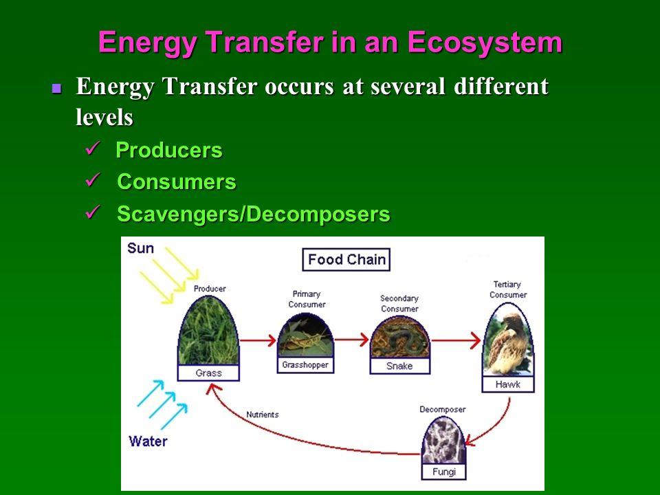 types of energy transfer ppt vanguard energy etf. Black Bedroom Furniture Sets. Home Design Ideas