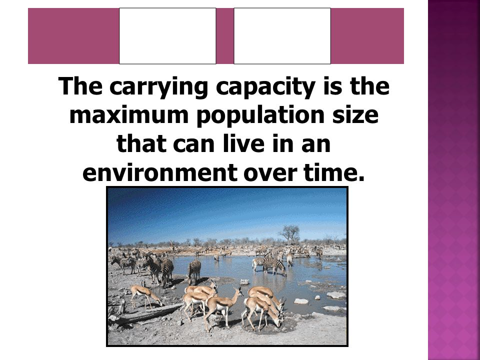 _______ _______ The carrying capacity is the maximum population size that can live in an environment over time.