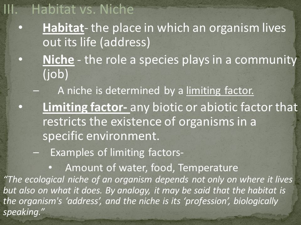 Habitat vs. Niche Habitat- the place in which an organism lives out its life (address) Niche - the role a species plays in a community (job)