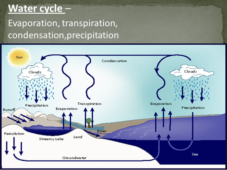Water cycle – Evaporation, transpiration, condensation,precipitation