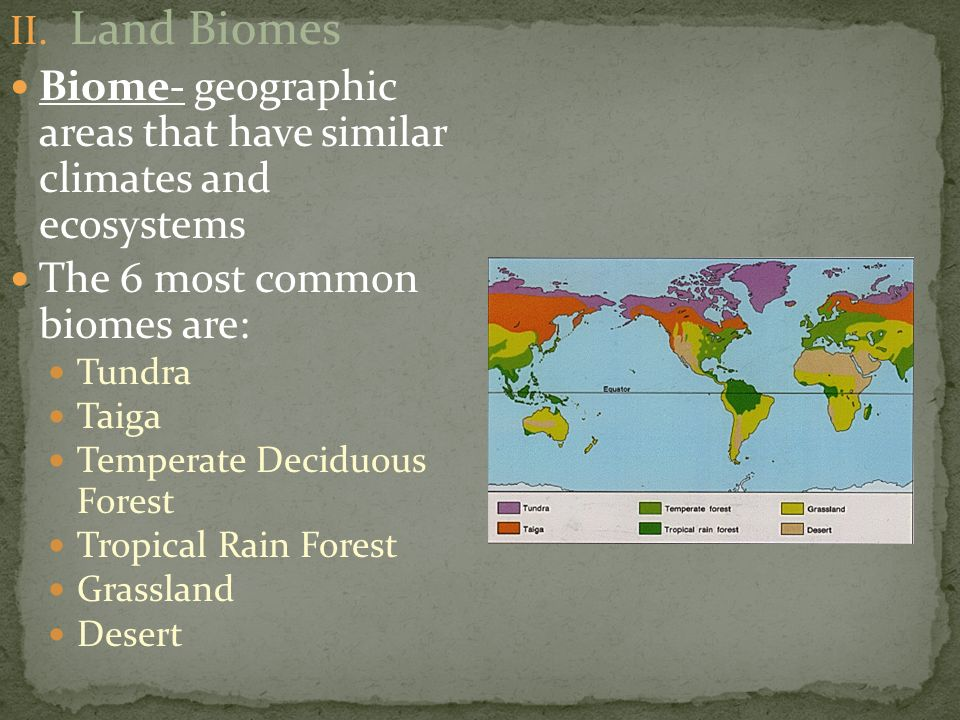Land Biomes Biome- geographic areas that have similar climates and ecosystems. The 6 most common biomes are: