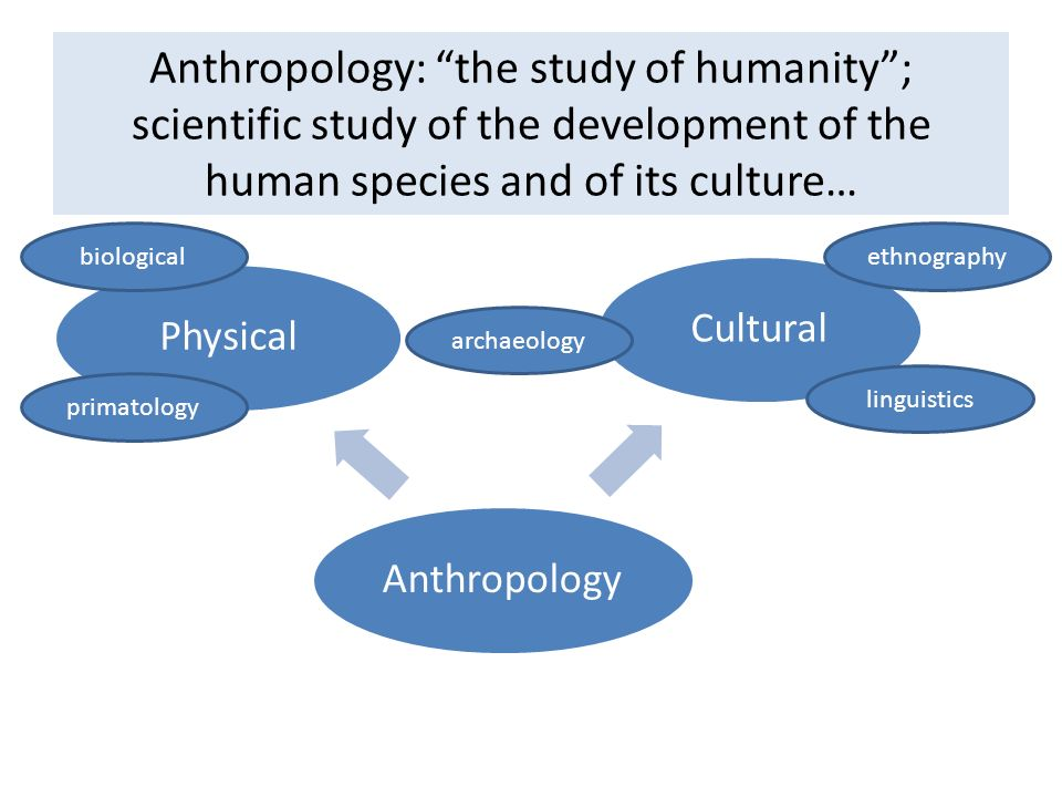 the study of human society and family