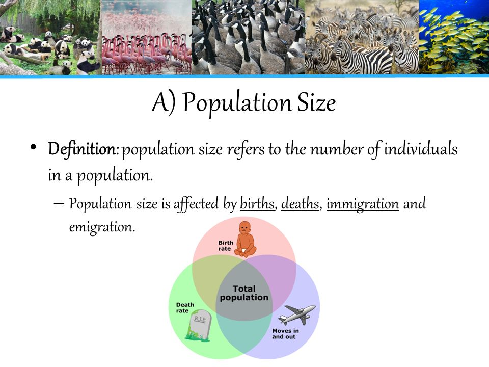 definition of population Population: population, in human biology, the whole number of inhabitants  occupying an area (such as a country or the world) and continually being  modified by.