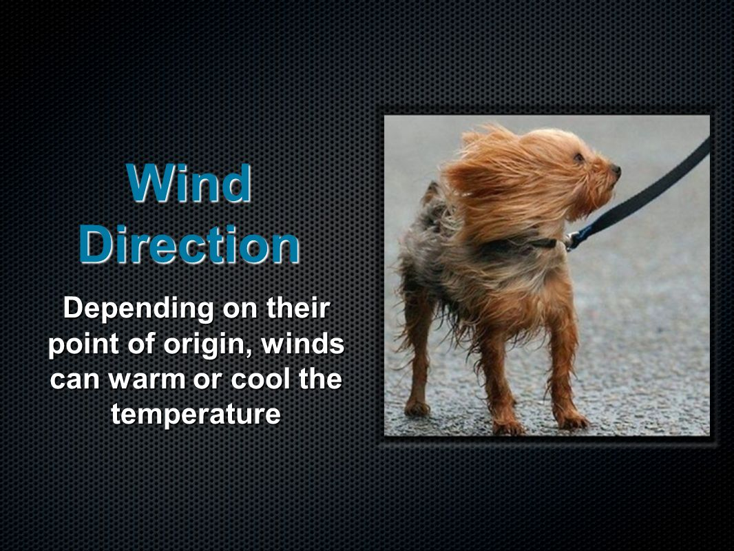 Wind Direction Depending on their point of origin, winds can warm or cool the temperature