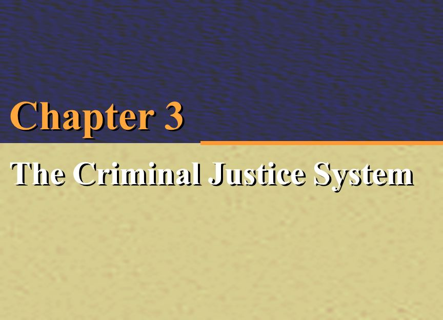Chapter 3 The Criminal Justice System Irwin McGraw Hill