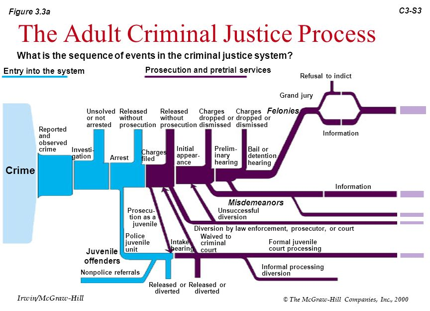 The criminal justice system and process essay