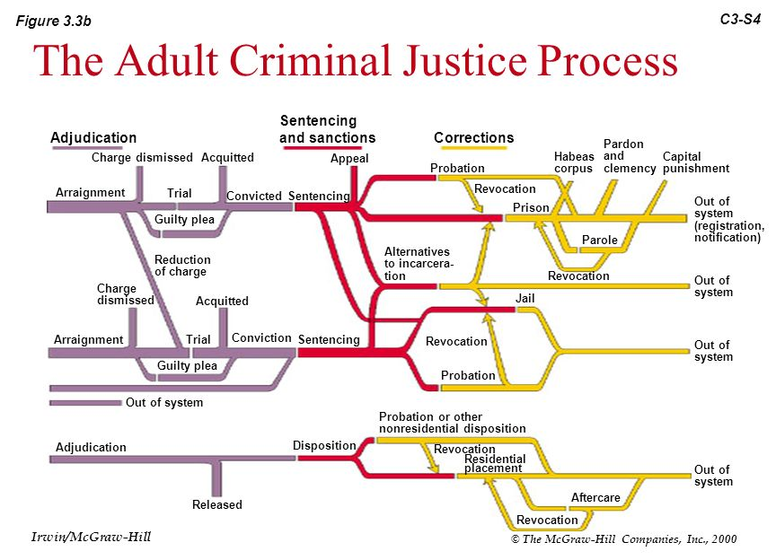 the criminal justice system Professionals involved within the criminal justice system to identify some will   the criminal justice system before but, as a result of personality changes after.