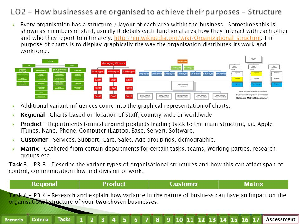 how business is organized