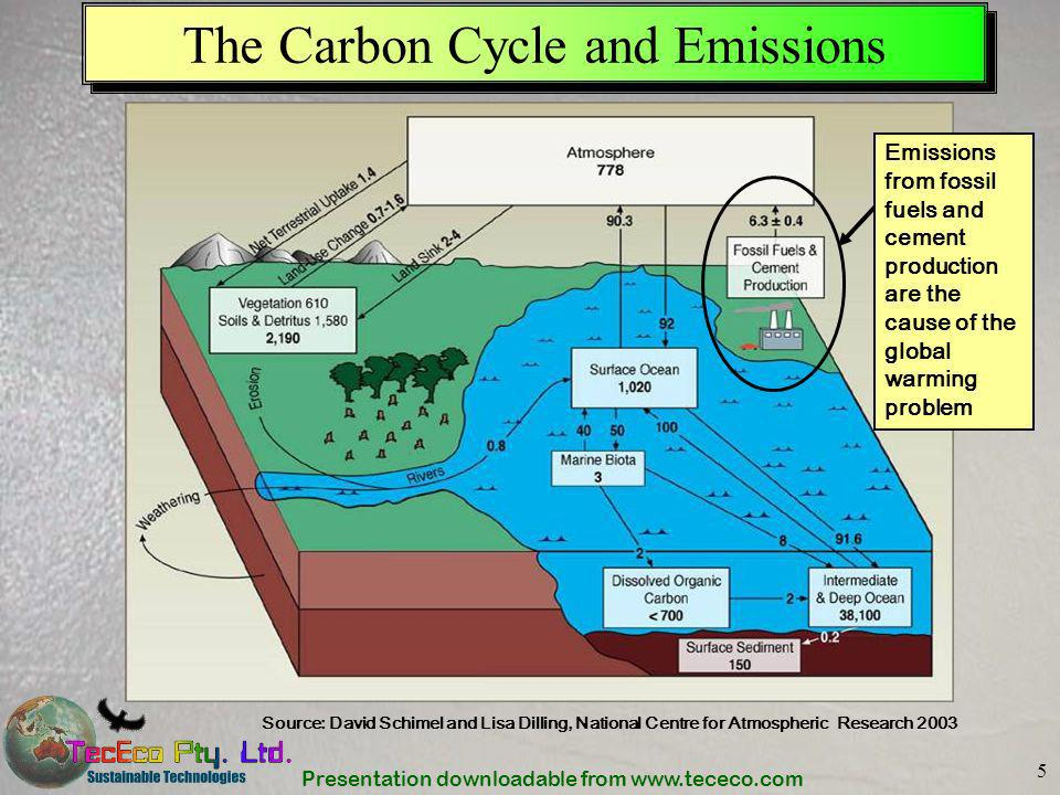 The Carbon Cycle and Emissions