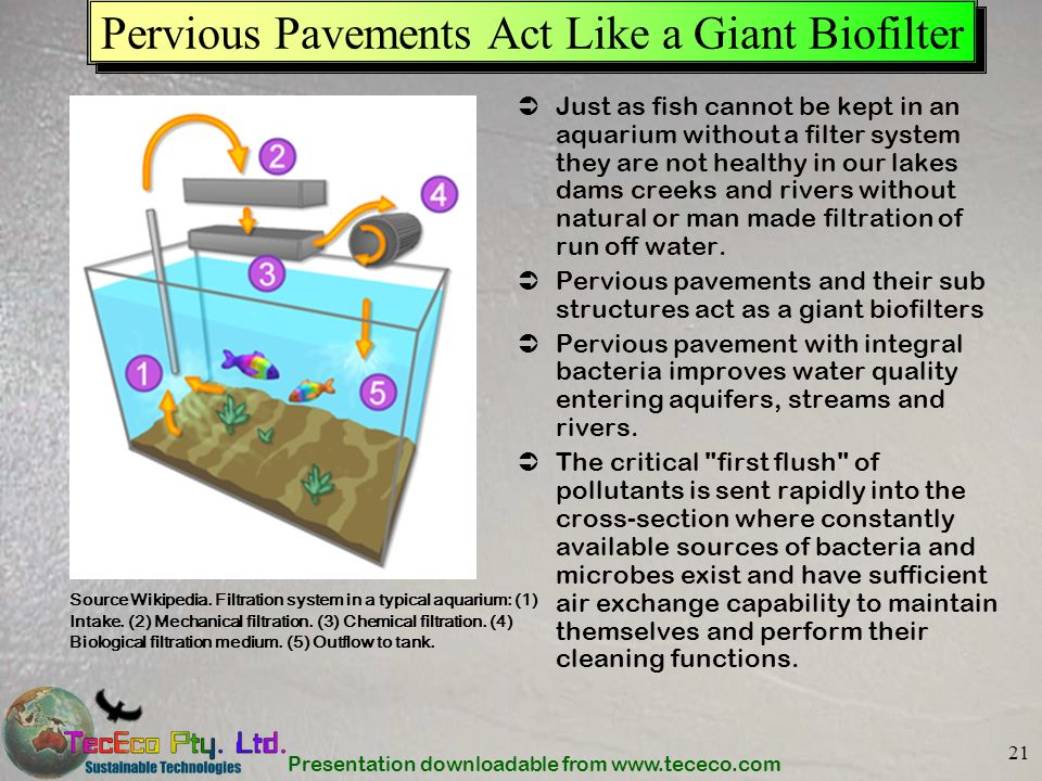 Pervious Pavements Act Like a Giant Biofilter