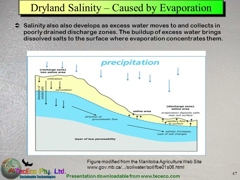 Dryland Salinity – Caused by Evaporation