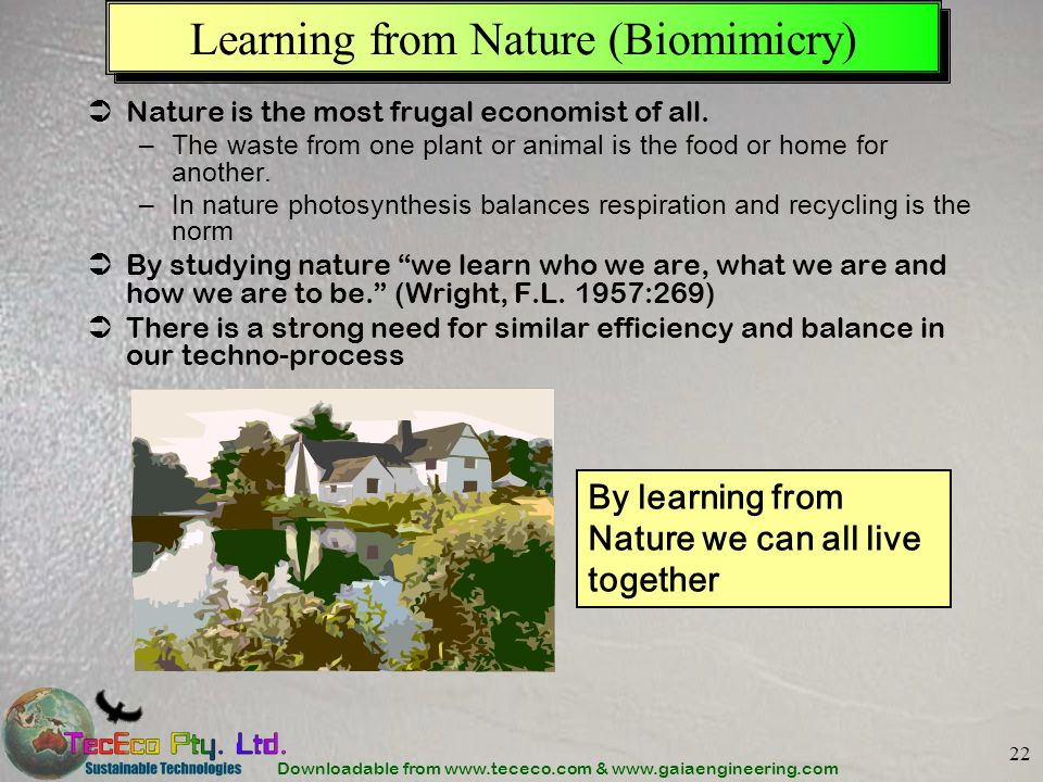 Learning from Nature (Biomimicry)