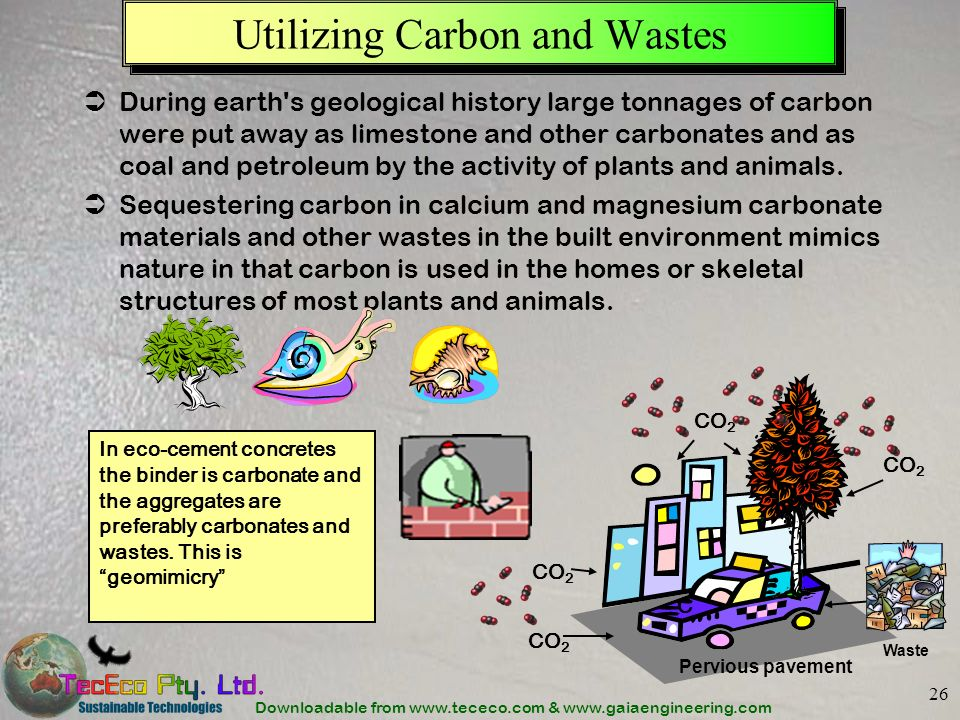 Utilizing Carbon and Wastes