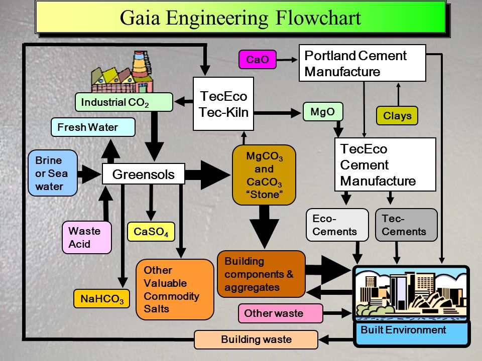 Gaia Engineering Flowchart