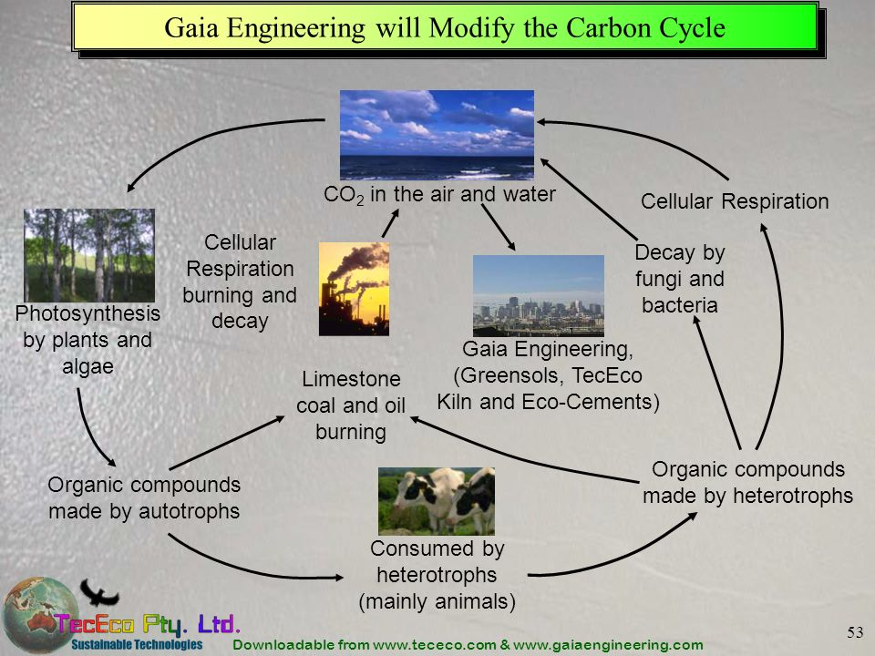 Gaia Engineering will Modify the Carbon Cycle