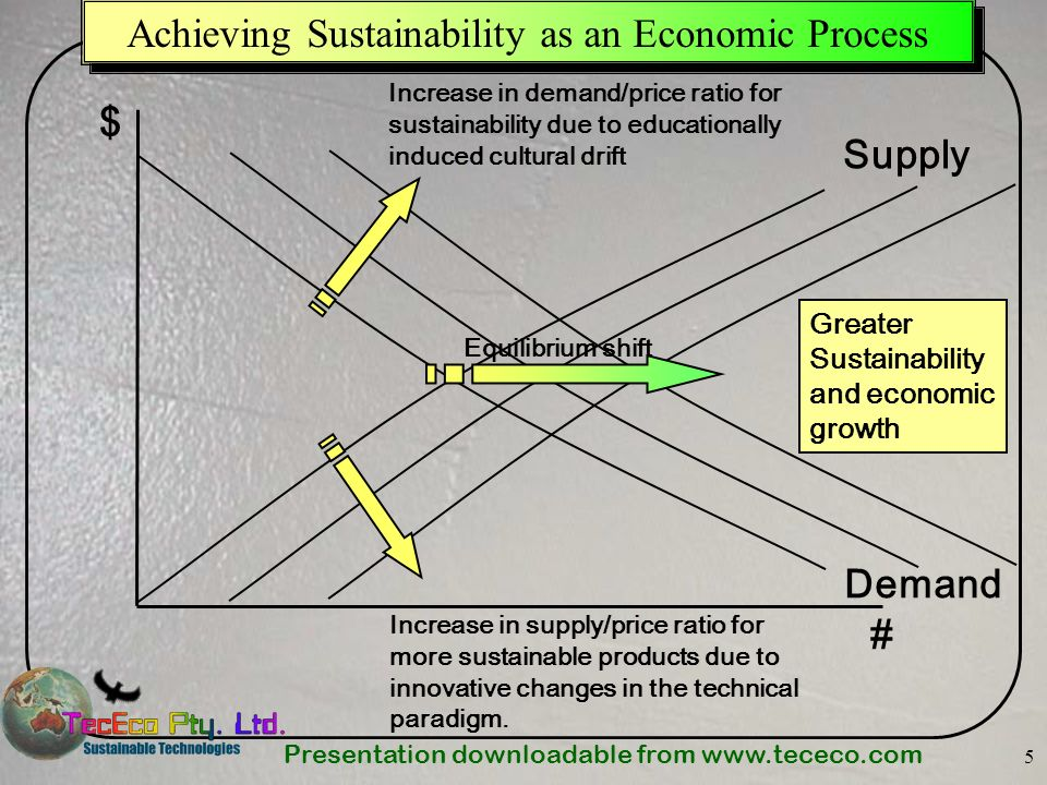Achieving Sustainability as an Economic Process