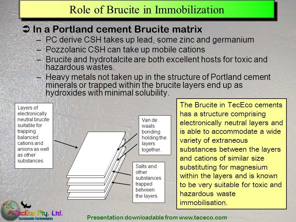 Role of Brucite in Immobilization