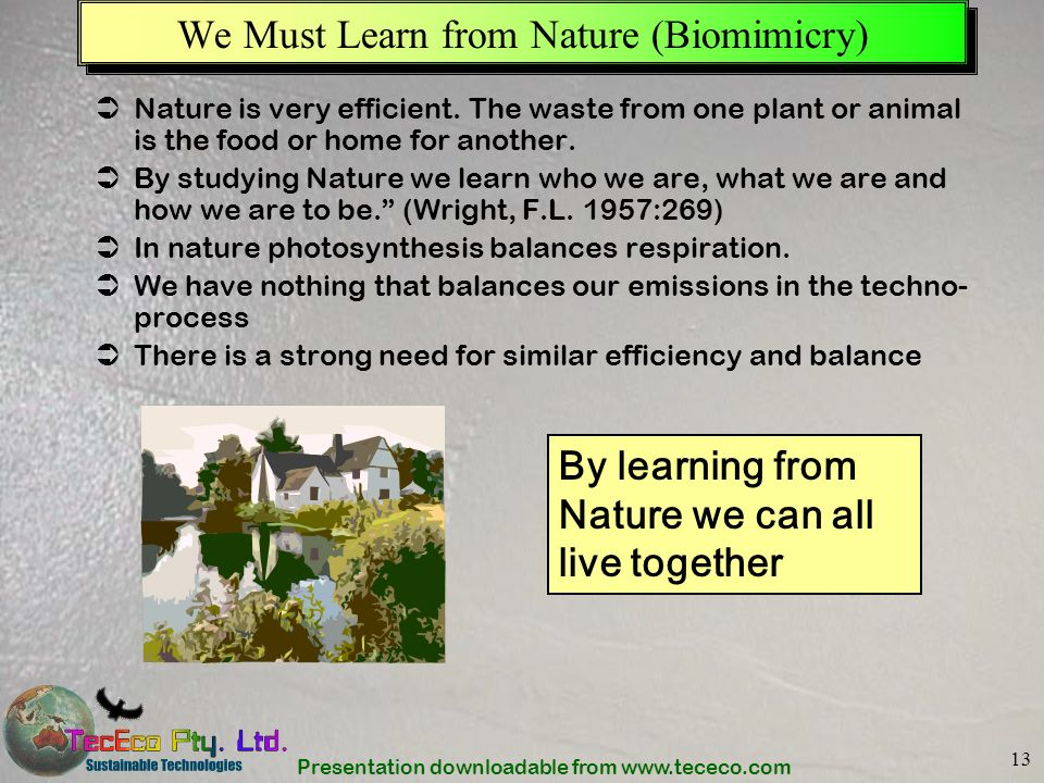 We Must Learn from Nature (Biomimicry)
