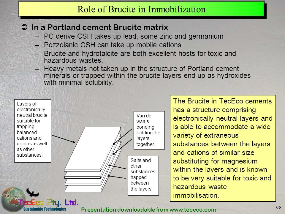 Role of Brucite in Immobilization
