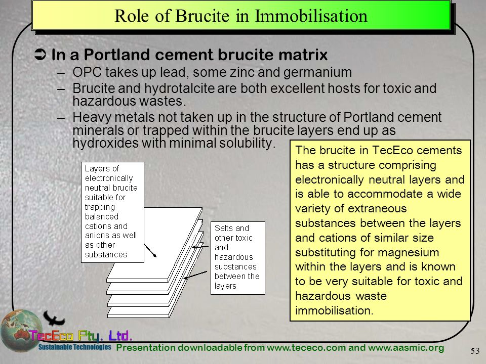 Role of Brucite in Immobilisation