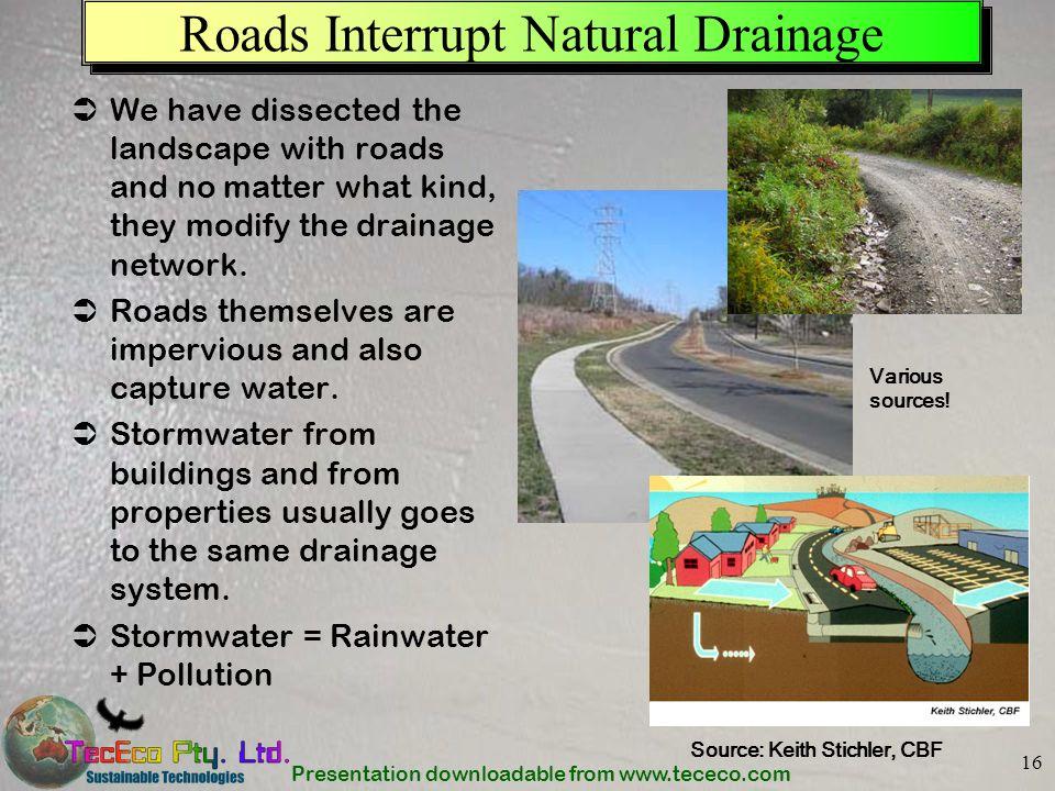 Roads Interrupt Natural Drainage