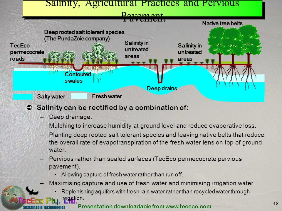 Salinity, Agricultural Practices and Pervious Pavement