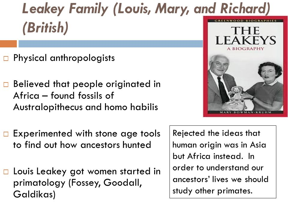 contribution of leakey family essay Role of families in social and economic empowerment of individuals prepared by zitha mokomane, phd  family resilience, on the other hand,.