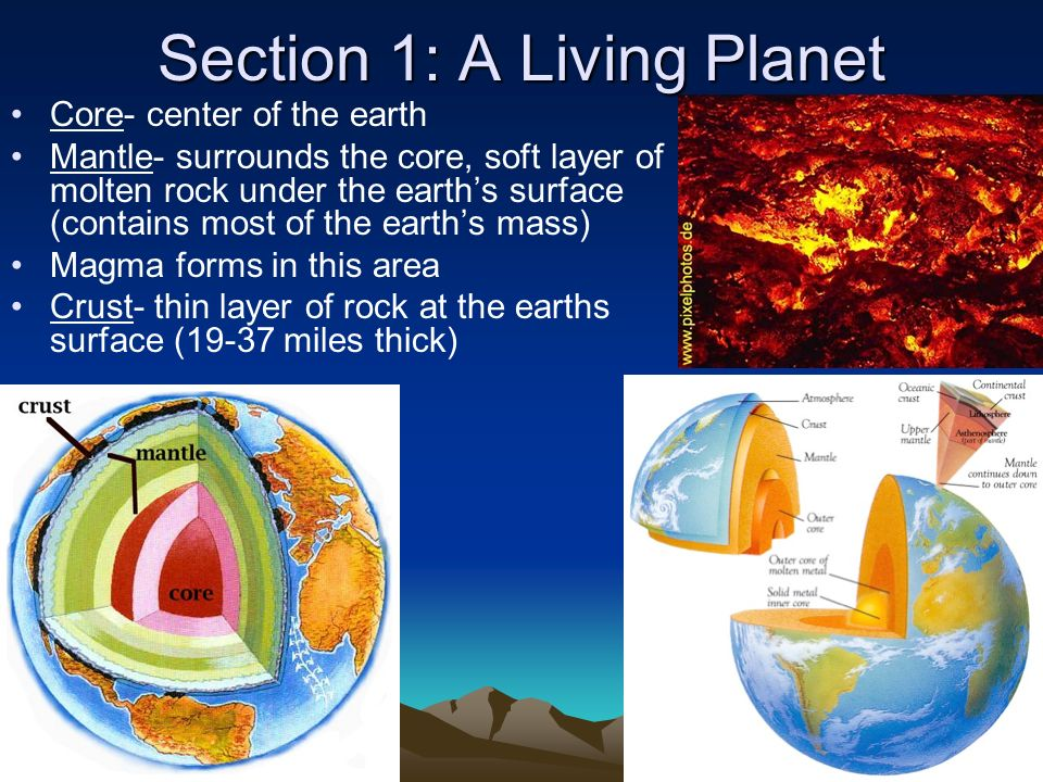 Section 1: A Living Planet