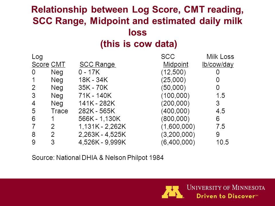 relationship of cow hygiene scores and scc