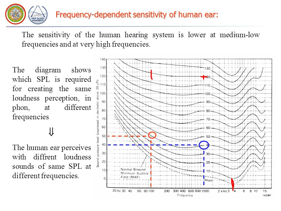 Frequency-dependent sensitivity of human ear:
