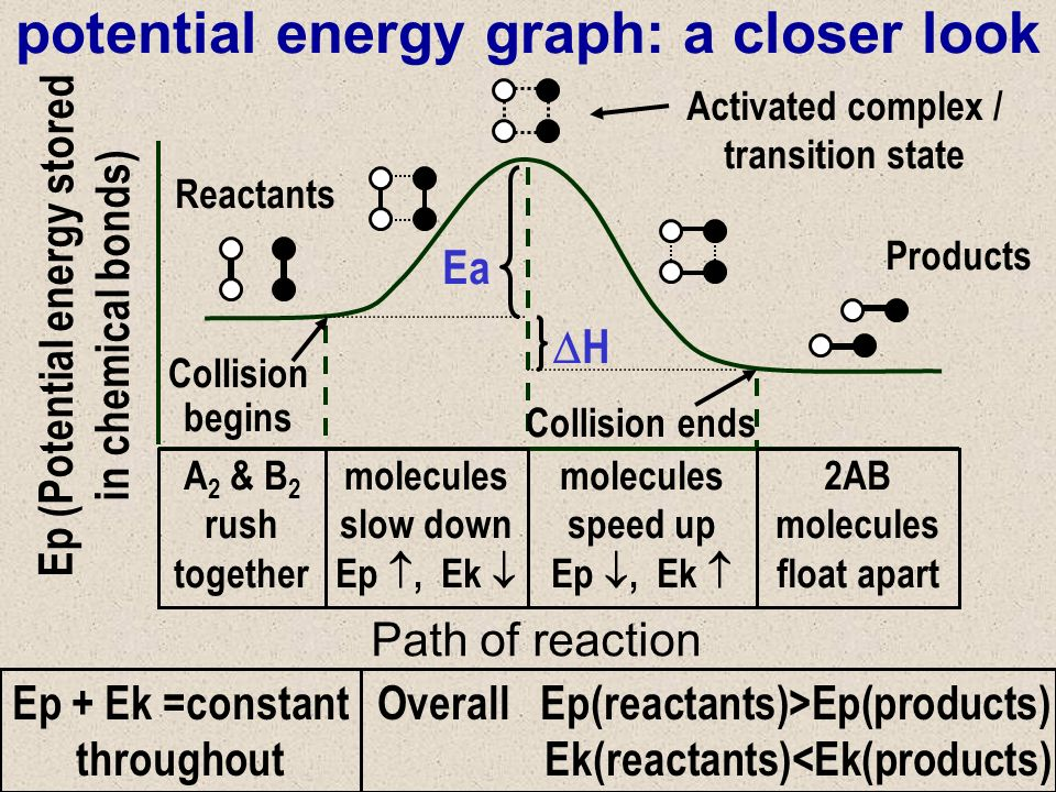 potential energy graph: a closer look