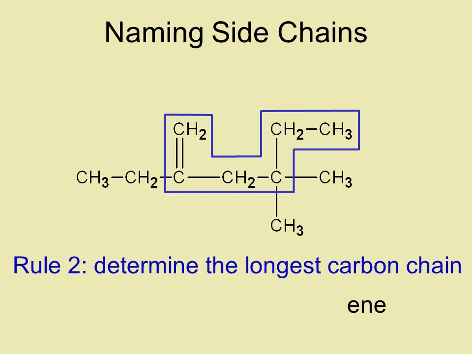 Naming Side Chains Rule 2: determine the longest carbon chain ene