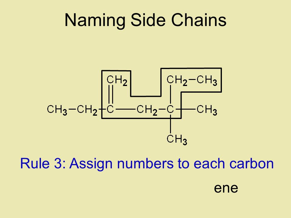 Naming Side Chains Rule 3: Assign numbers to each carbon ene
