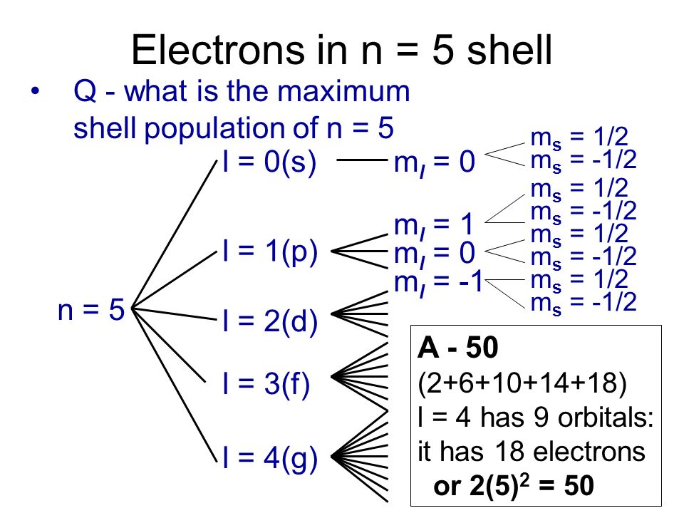 Electrons in n = 5 shell Q - what is the maximum shell population of n = 5. ms = 1/2. ms = -1/2. l = 0(s)