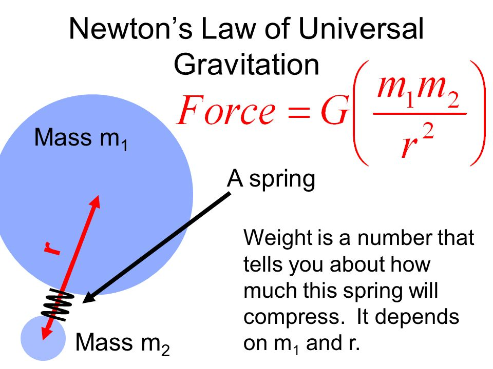 Newtons Laws and Weight Mass amp Gravity  Studycom