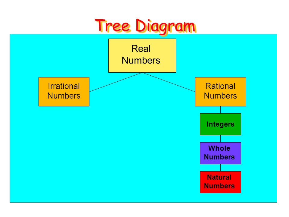 Warm up round to the indicated place value 782 to the nearest tens 16 tree diagram real numbers irrational numbers rational numbers integers whole numbers natural numbers ccuart Images