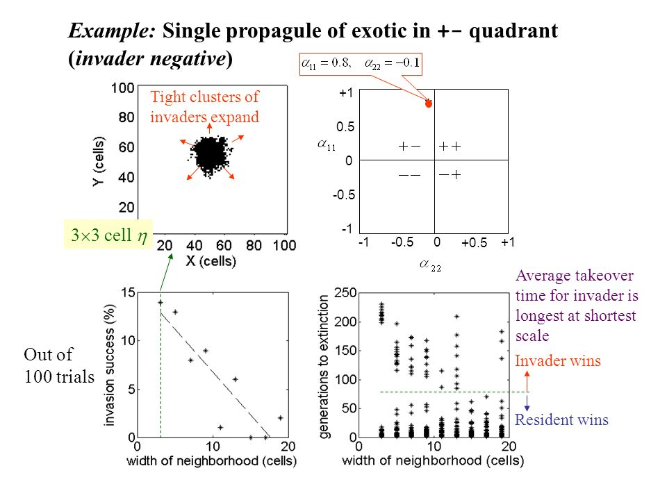 Example: Single propagule of exotic in +- quadrant (invader negative)