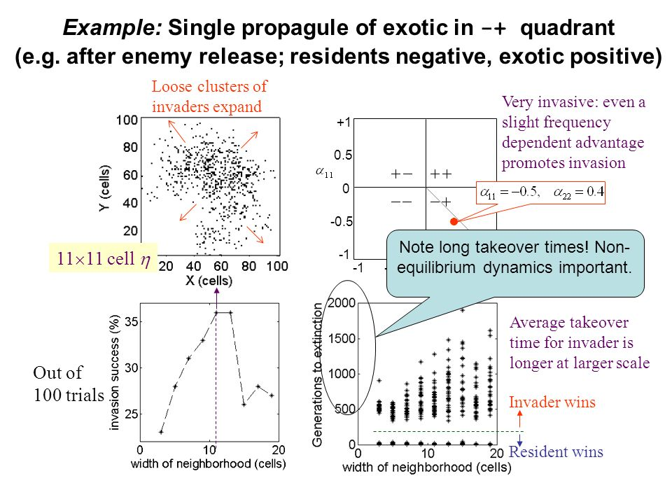 Example: Single propagule of exotic in -+ quadrant