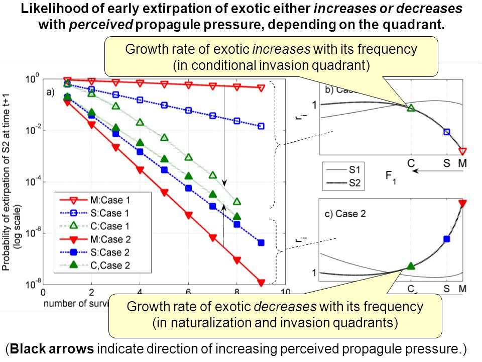 Growth rate of exotic increases with its frequency