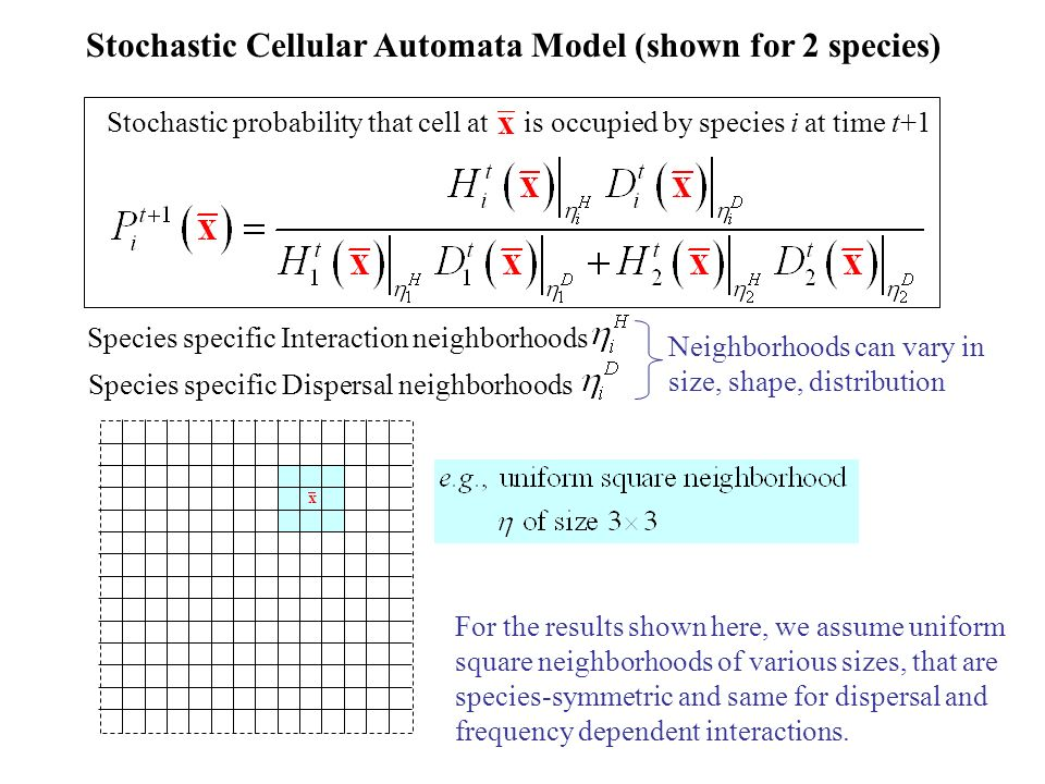 Stochastic Cellular Automata Model (shown for 2 species)