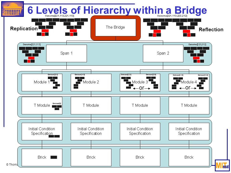 6 Levels of Hierarchy within a Bridge