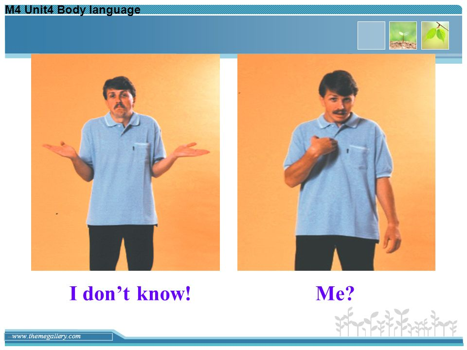 M4 Unit4 Body language I don't know! Me