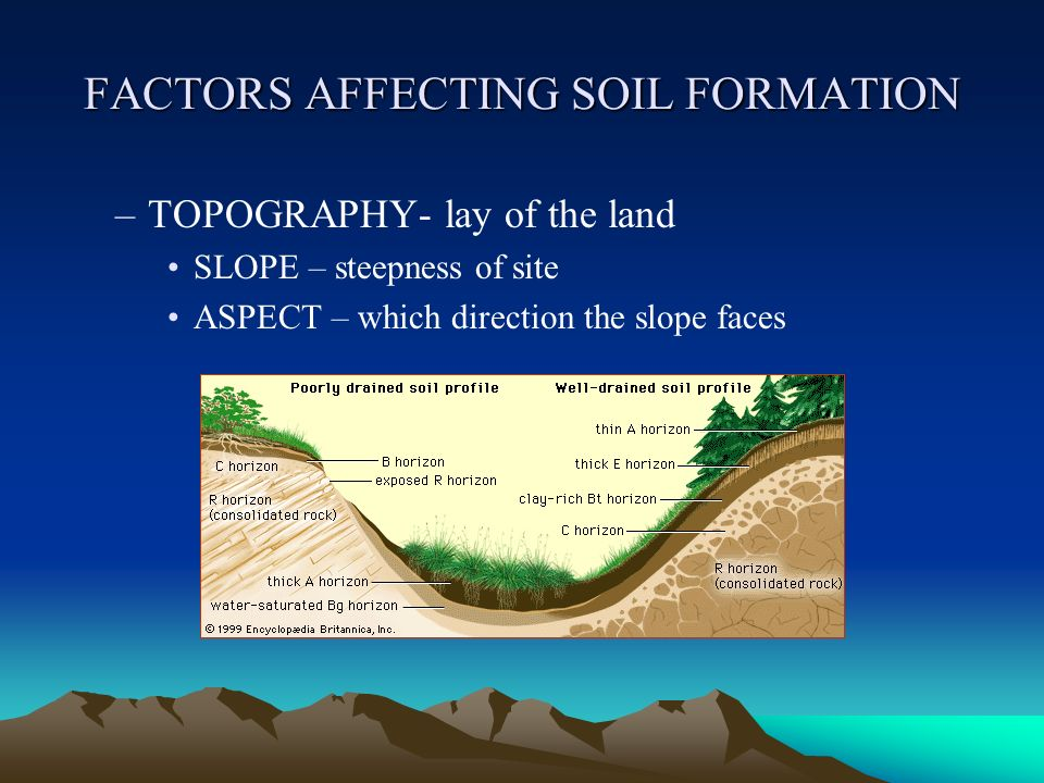 soil profile description The following entry box may be used to retrieve a list of official soil series descriptions based on a list of soil series enter only one name per line.