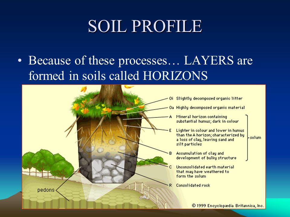 Soil origin and development ppt video online download for Soil profile definition