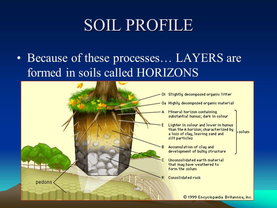 Soil origin and development ppt video online download for Soil development definition