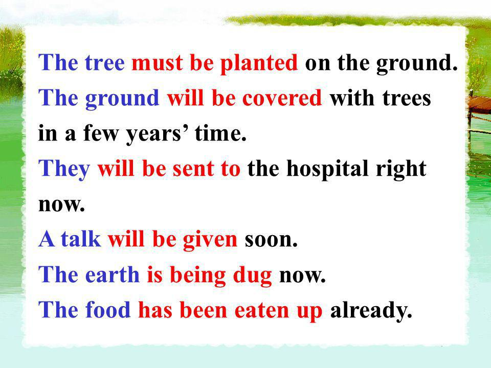 The tree must be planted on the ground.