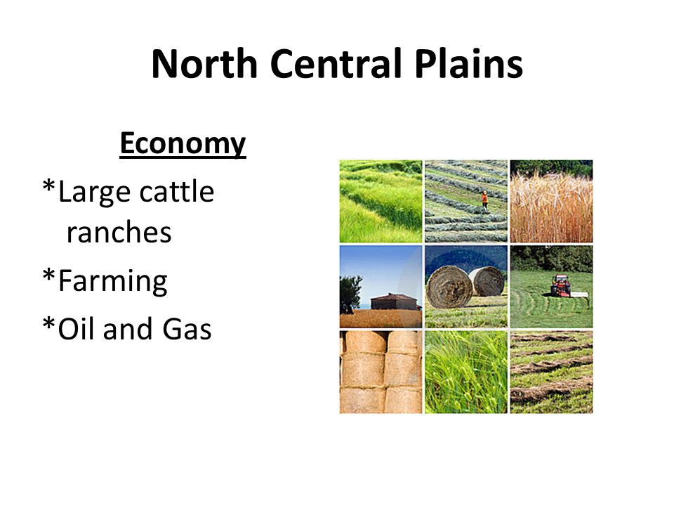 Economy *Large cattle ranches *Farming *Oil and Gas