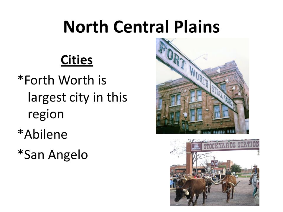 North Central Plains Cities *Forth Worth is largest city in this region *Abilene *San Angelo